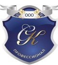 Агентство СК-ПРОФЕССИОНАЛ
