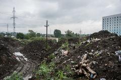 Эксперты поддержали предложение экологов увеличить штрафы за свалки в 10 раз