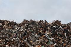 В России могут увеличить штрафы за сброс мусора в неположенных местах