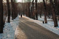 Глава Минстроя рассказал, сколько парков и скверов благоустроят в 2021-м году