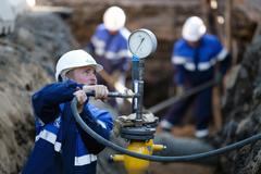 Госдума приняла закон о бесплатной газификации домов
