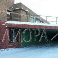 Капитальный гараж,  ул. Ипподромная-фото1