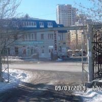 Капитальный гараж,  ул. Пушкина, 17-фото2