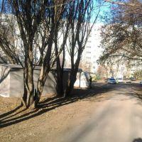 Металлический гараж,  ул. СибНИИСХоз, 7-фото3