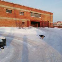 Капитальный гараж,  ул. 2-я Озерная, 21-фото1