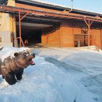 Капитальный гараж,  ул. Дианова-фото1