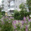 3-комнатная квартира, С. КРАСНОЯРКА, УЛ. С/П КОММУНАЛЬНИК, 1