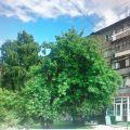 3-комнатная квартира, УЛ. ЛУНАЧАРСКОГО, 10