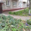 1-комнатная квартира, УЛ. ЭМИЛИИ АЛЕКСЕЕВОЙ, 51