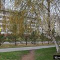 1-комнатная квартира, УЛ. 9-Й ПЯТИЛЕТКИ, 18