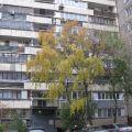 1-комнатная квартира, НАБ. НАГАТИНСКАЯ, 12 К4