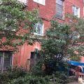1-комнатная квартира,  УЛ. КОСАРЕВА, 34