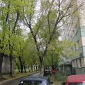 4-комнатная квартира, УЛ. ЛАТЫШСКИХ СТРЕЛКОВ, 29