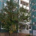 1-комнатная квартира, д. Новое Девяткино, ул. Лесная, 2