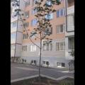 1-комнатная квартира, УЛ. ПАРИЖСКАЯ