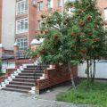 4-комнатная квартира, ТОМСК, КАРТАШОВА 29Б