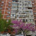 2-комнатная квартира, УЛ. ГАРАЖНАЯ, 81